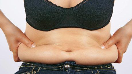 Best Fat Loss Cardio Lean On Meals